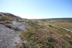Λόγχη ακρωτηρίων, νέα γη, Καναδάς Στοκ Φωτογραφίες