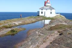 Λόγχη ακρωτηρίων, νέα γη, Καναδάς Στοκ Εικόνες