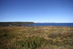 Λόγχη ακρωτηρίων, νέα γη, Καναδάς Στοκ εικόνα με δικαίωμα ελεύθερης χρήσης