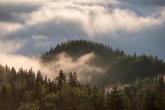 Λόφοι βουνών που καλύπτονται με την ομίχλη πρωινού στο καλοκαίρι Στοκ εικόνες με δικαίωμα ελεύθερης χρήσης