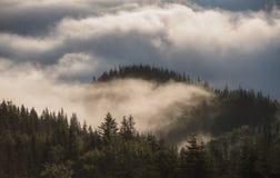 Λόφοι βουνών που καλύπτονται με την ομίχλη Στοκ εικόνες με δικαίωμα ελεύθερης χρήσης