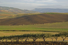 λόφοι επαρχίας στοκ εικόνα