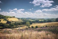 Λόφοι θερινής επαρχίας στη φωτεινή ηλιόλουστη ημέρα στην Ουαλία στοκ εικόνα με δικαίωμα ελεύθερης χρήσης