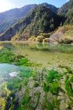 Λόφοι και λίμνη σε Jiuzhaigou Στοκ φωτογραφία με δικαίωμα ελεύθερης χρήσης