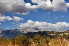 Λόφοι που καλύπτονται με τα άλση ελιών και τον όμορφο ουρανό με τα σύννεφα στοκ φωτογραφία
