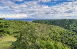 Λόφοι που καλύπτονται με το τροπικό δάσος, με τον Ατλαντικό Ωκεανό στον ορίζοντα Στοκ εικόνες με δικαίωμα ελεύθερης χρήσης