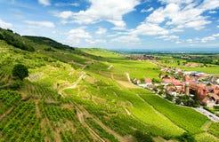 Λόφοι που καλύπτονται με τους αμπελώνες στην περιοχή κρασιού της Αλσατίας, Γαλλία στοκ εικόνα