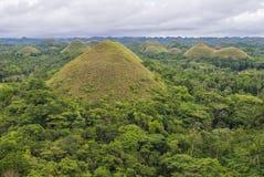 Λόφοι σοκολάτας, Bohol στοκ φωτογραφίες