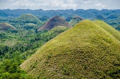 Λόφοι σοκολάτας, καλοκαίρι, νησί Bohol, Φιλιππίνες Στοκ Φωτογραφίες