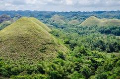 Λόφοι σοκολάτας, καλοκαίρι, νησί Bohol, Φιλιππίνες Στοκ Φωτογραφία