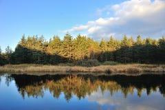 Λόφοι στην ανατολή Στοκ εικόνες με δικαίωμα ελεύθερης χρήσης