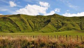 Λόφοι στη Νέα Ζηλανδία στοκ φωτογραφία με δικαίωμα ελεύθερης χρήσης