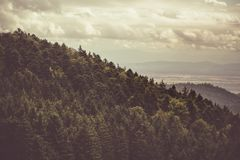 Λόφοι της Αλσατίας στοκ φωτογραφία