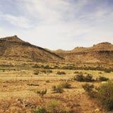 Λόφοι της ερήμου της Καλιφόρνιας Αμμόλοφοι το καλοκαίρι Στοκ εικόνα με δικαίωμα ελεύθερης χρήσης