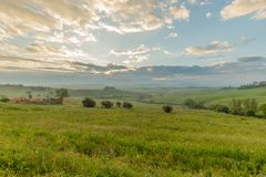 """Λόφοι της Τοσκάνης: Val δ """"Orcia το πρωί με τα φω'τα της αυγής Σιένα, Τοσκάνη, Ιταλία στοκ εικόνες"""