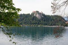 Λόφοι των Άλπεων, λίμνη που αιμορραγείται, Σλοβενία, Ευρώπη στοκ φωτογραφία με δικαίωμα ελεύθερης χρήσης
