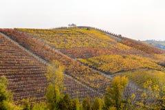 Λόφοι των αμπελώνων το φθινόπωρο Piedmont Πιεμόντε, Ιταλία στοκ φωτογραφία