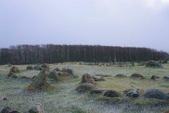 Λόφοι Lindholm Στοκ Φωτογραφίες