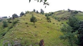 Λόφοι Shimla φύσης βουνών στοκ εικόνες