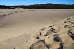 Λόφος άμμου Tangalooma στοκ εικόνες