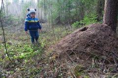 Λόφος αγοριών και μυρμηγκιών Στοκ εικόνες με δικαίωμα ελεύθερης χρήσης