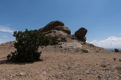 Λόφος βράχου χελωνών στο νοτιοδυτικό Νέο Μεξικό στοκ φωτογραφία με δικαίωμα ελεύθερης χρήσης