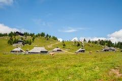 Λόφος Planina Velika, Σλοβενία στοκ φωτογραφία