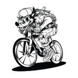 Λύκος ένα ποδήλατο, γύρος κυνηγών λύκων σε ένα ποδήλατο απεικόνιση αποθεμάτων