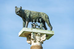 Λύκος με Romulus και Remus Στοκ Εικόνες