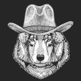 Λύκος, σκυλί Άγριο καπέλο δυτικών παραδοσιακό αμερικανικό κάουμποϋ Ροντέο του Τέξας Τυπωμένη ύλη για τα παιδιά, μπλούζα παιδιών Ε διανυσματική απεικόνιση