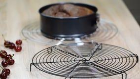 Μάγειρας που παίρνει έξω το κέικ στρώματος από τη μορφή κέικ απόθεμα βίντεο