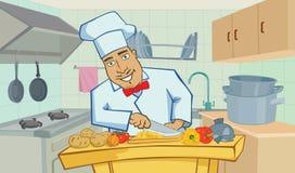 Μάγειρας στην κουζίνα διανυσματική απεικόνιση