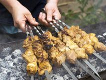 Μάγειρες κρέατος στους καυτούς άνθρακες στον καπνό Πικ-νίκ στη φύση στοκ φωτογραφία