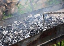 Μάγειρες κρέατος στους καυτούς άνθρακες στον καπνό Πικ-νίκ στη φύση στοκ εικόνες με δικαίωμα ελεύθερης χρήσης