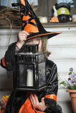 Μάγισσα αποκριών Στοκ Φωτογραφία