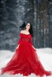Μάγισσα γυναικών στο κόκκινο φόρεμα και με το κοράκι στον ώμο της σε χιονώδη Στοκ εικόνα με δικαίωμα ελεύθερης χρήσης