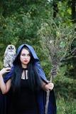 Μάγισσα με ένα πουλί Στοκ Εικόνες