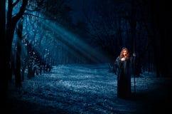 Μάγισσα στο δάσος νύχτας Στοκ Εικόνα