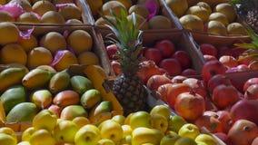 Μάγκο, ρόδι, μήλο στην αγορά φρούτων απόθεμα βίντεο