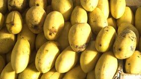 Μάγκο στην αγορά φρούτων απόθεμα βίντεο