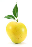 Μάγκο της Apple στο λευκό Στοκ Εικόνες