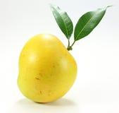 Μάγκο της Apple στο λευκό Στοκ εικόνα με δικαίωμα ελεύθερης χρήσης