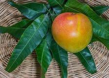 Μάγκο, φρούτα, λαχανικά Στοκ εικόνες με δικαίωμα ελεύθερης χρήσης