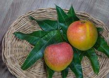 Μάγκο, φρούτα, λαχανικά Στοκ φωτογραφία με δικαίωμα ελεύθερης χρήσης