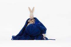 Μάθετε να πλέκετε Στοκ Φωτογραφία