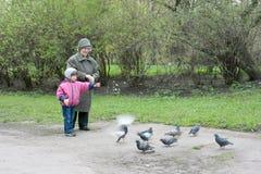 μάθημα ευγένειας Στοκ φωτογραφίες με δικαίωμα ελεύθερης χρήσης