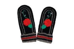 Μάλλινα γάντια Στοκ εικόνες με δικαίωμα ελεύθερης χρήσης