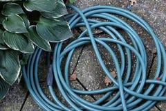 μάνικα κήπων δ 300 κανόνων Στοκ φωτογραφία με δικαίωμα ελεύθερης χρήσης