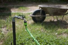 μάνικα κήπων δ 300 κανόνων στοκ εικόνες με δικαίωμα ελεύθερης χρήσης