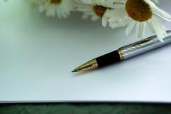 Μάνδρα, φύλλο της Λευκής Βίβλου και chamomile Στοκ εικόνα με δικαίωμα ελεύθερης χρήσης